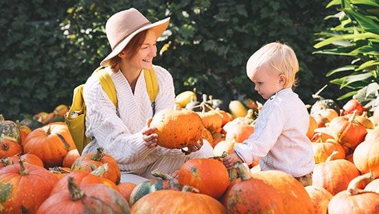 Herbstzauber – die schönsten Herbst- und Bauernmärkte